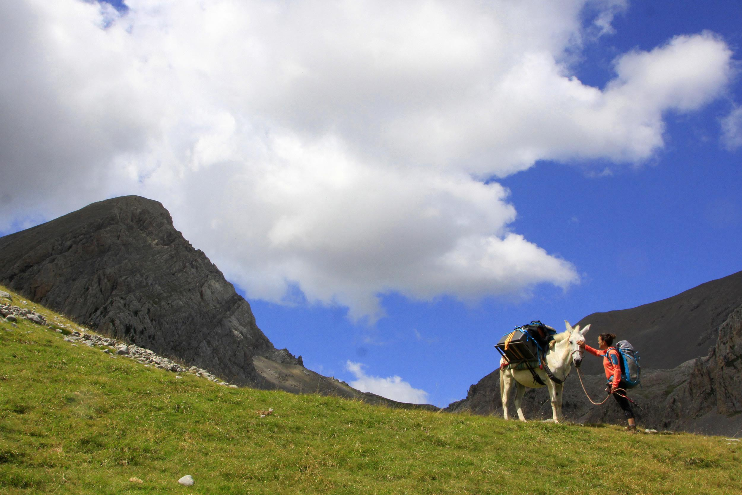 Trekking con Mulas en Familia